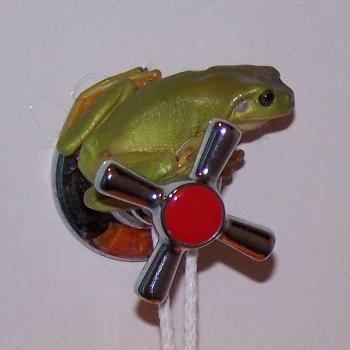 Green Frog is unhappy that someone is in his bathroom.