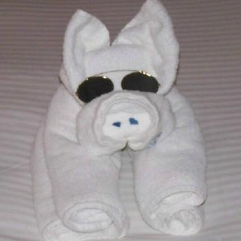 Towel Pig on Cruise
