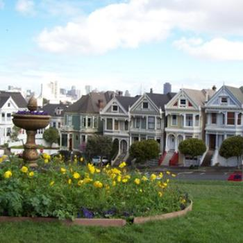 the painted ladies of San Fransisco / dino