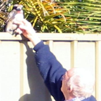 Dad with Kookaburra