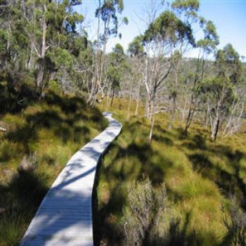 Boardwalk, Cradle Mountain, Tasmania - Wendy/Perth