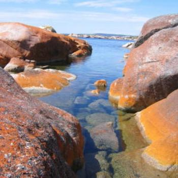 Bay of Fires, Tasmania. - Wendy/Perth