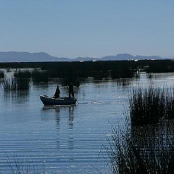 Fisherman of floating islands on Lake Titicaca, Puno, Peru