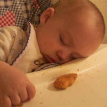 Asleep while eating