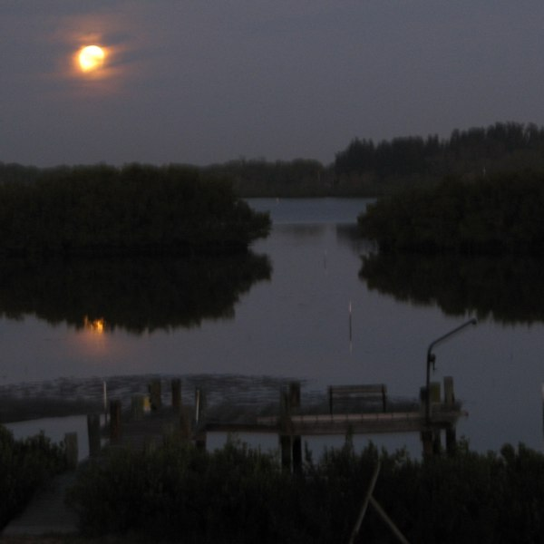 6:15am, moon setting over Terra Ceia Bay, Florida