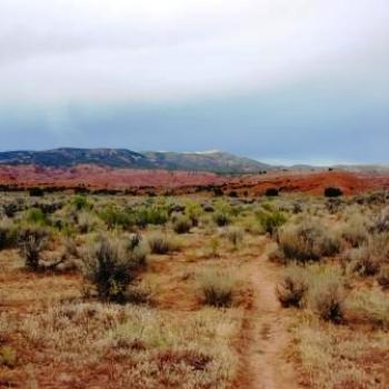 Utah Halfway Hollow Mountain Bike Trail by Wilodene in Sep 2009
