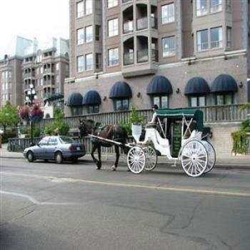 Horse & Carriage, Victoria, Vancouver Island, Canada, Wendy/Perth