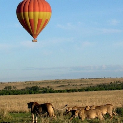 "Masai Mara ""Breakfast by air?"" 2004 - Keyan Bowes"