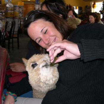 The beautiful Manuela and the llama that was hiding in her purse. - Des