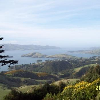 View down Otago Peninsula from grounds of Lanarch Castle NZ