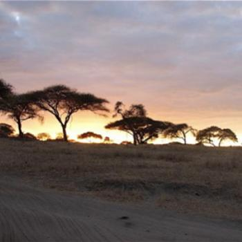 Sunset in Tarangire, Tanzania