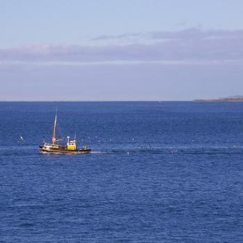 Oyster trawler returning to Bluff NZ