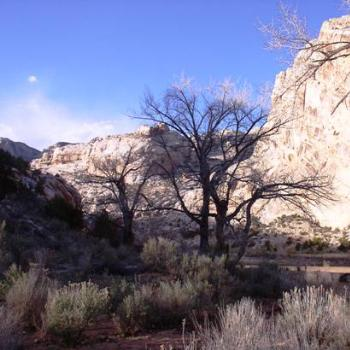 Late winter at Green River in Dinosaur Nat'l Monument, Utah