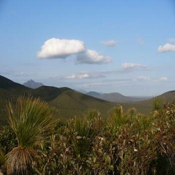Stirling Ranges, Albany (Anne)