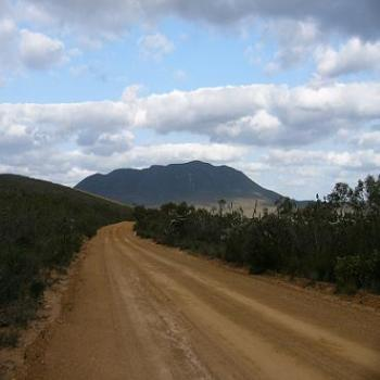 Red Gum Pass Road in the Stirling Ranges, Albany (Anne)