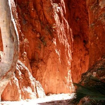 Stanley Chasm MacDonnell Ranges near Alice Springs NT