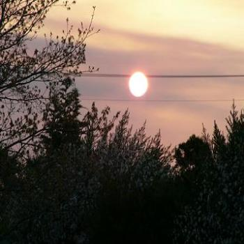 Sunset through the bushfire smoke (Anne)