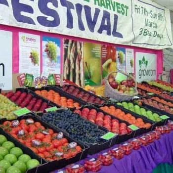 Apple & Grape Festival, Stanthorpe Qld.