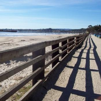 Boardwalk at Aptos beach CA: dino / Sth Gippsland