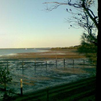 Low Tide Redland Bay (CynB)