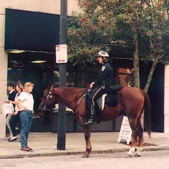 Our version of mounted police: Jubilee (the horse) retired last year after many years of service. \ kay NC