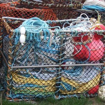 Fishing Gear, Lorne - Tree Sheila/NSW