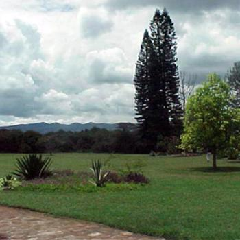 "Do you see the Maasai Warrior in the distance - ""Out of Africa"" - from Karen Blixen's porch"