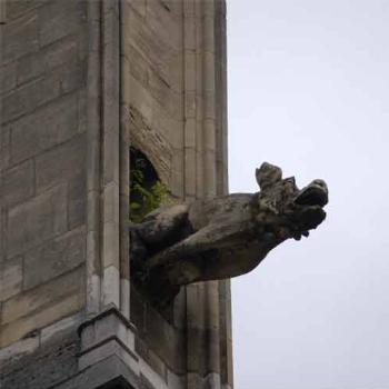gargoyle, Rouen Cathedral, France - Peg