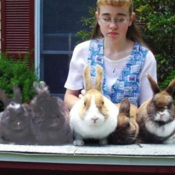 Our daughter, Lydia, with her five pet rabbits
