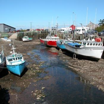 low tide at Hall's Harbour, Nova Scotia, Canada. The tides along the Bay of Fundy are 8-11 meters high.