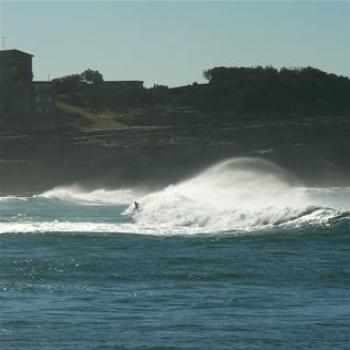 Wave Rider at Bronte