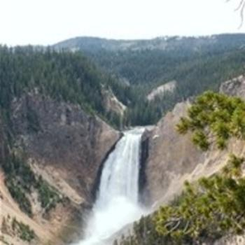 Lower Falls, Yellowstone Park