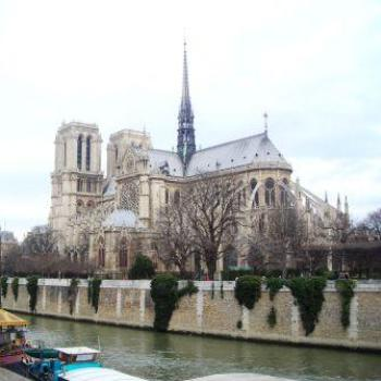 The back of Notre Dame  Sue/Ok