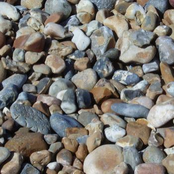Rocky beach. Shoreham near Brighton UK