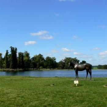 In Memory of a Horse, Woburn Abbey (Ian/Sydney)