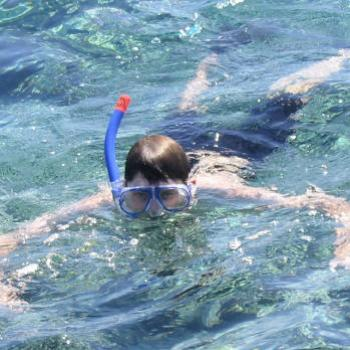 my son snorkling in Fiji Sept 2002 Kate/Sydney