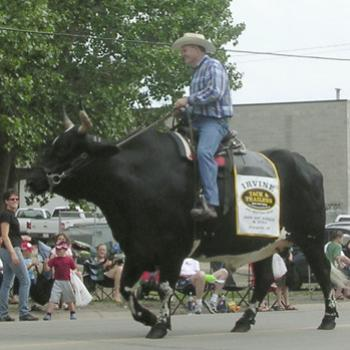 "My favourite ""float"" from the 2009 Beef & Barley Days Parade in Carstairs, Alberta -Bev/AB"
