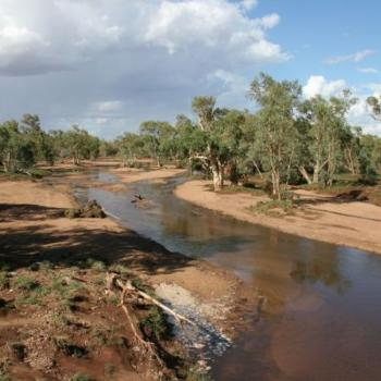 Todd River flowing in Alice Springs fi/nt