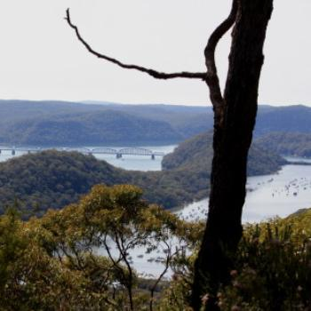 0373 view east over the Hawkesbury, Muogamarra Nature Reserve, Hawkesbury R, NSW, 12th Sept'09, Kate/Sydney