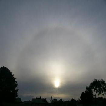 Halo around the sun in Albany
