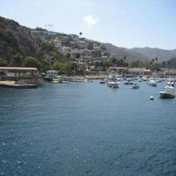 Welcome to Catalina Island.
